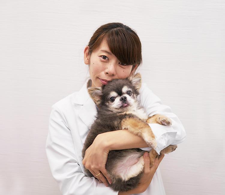 専門外来 皮膚科・アレルギー科・スキンケア科 日本獣医皮膚科学会認定医 江角 真梨子